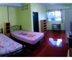 Cool and quiet Room for rent